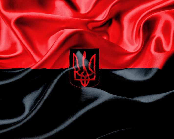 Стяг ОУН пропонують затвердити Прапором Національної Гідності України